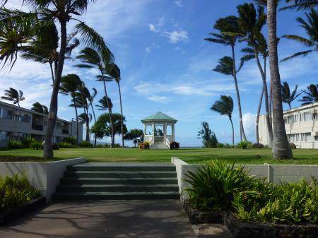 Hawaiiの輝く風