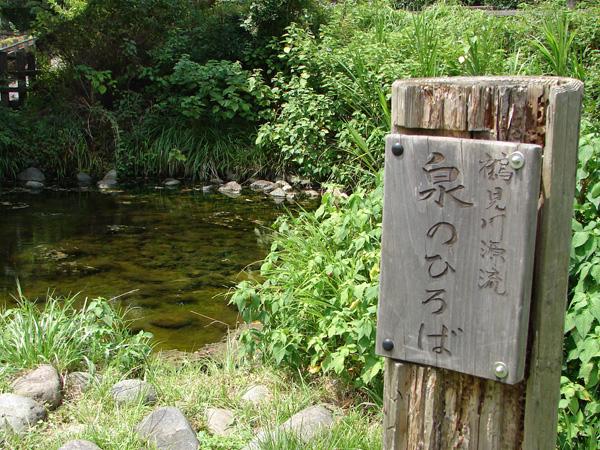 090815_tsurumi-02.jpg