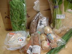 今週のお野菜達