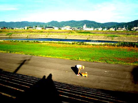 morningdog.jpg