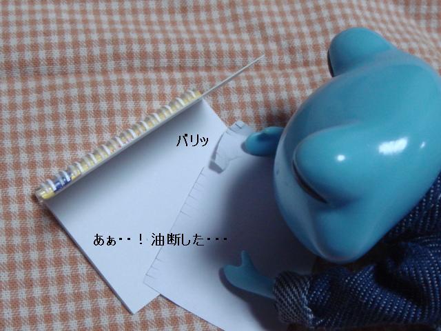 DSC03535.jpg