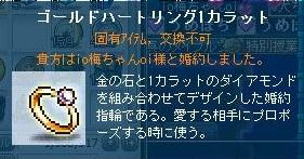 Maple111211_220814.jpg