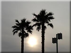 P418海岸と夕日