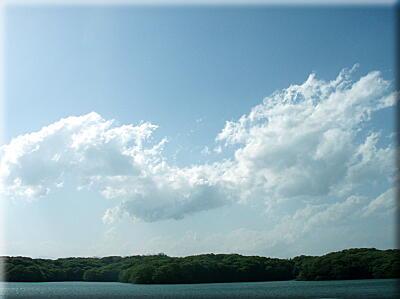 P429流れる雲