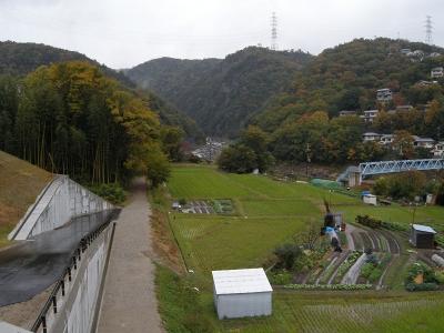 DSCN0743.jpg