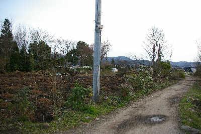 20090308.jpg