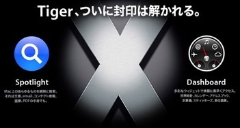 tiger_top.jpg