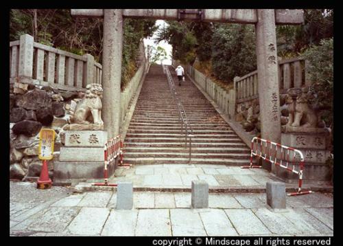 大江神社の鳥居