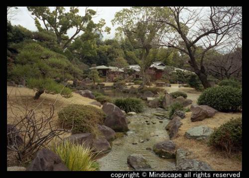 極楽浄土の庭2