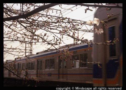 南海電気鉄道株式会社