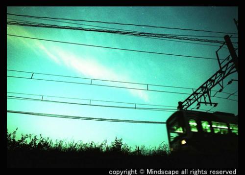 夕映え時の阪堺電車