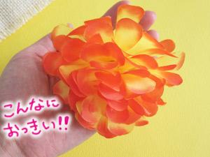 ブログ100623-3