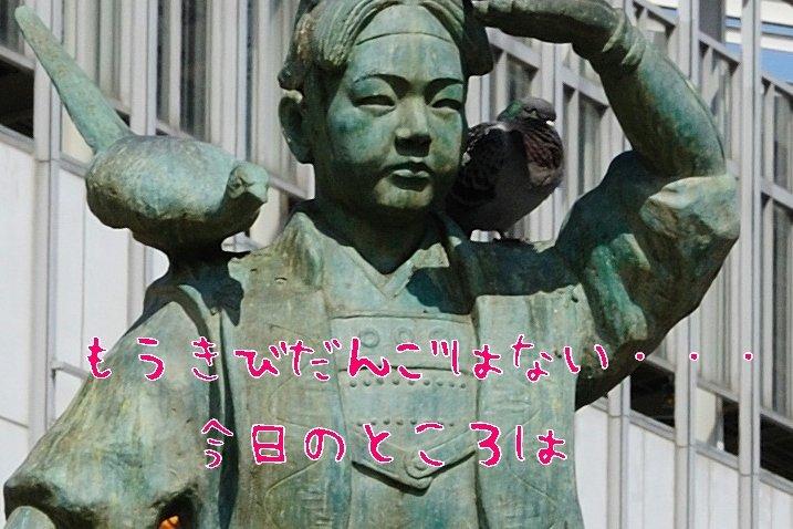 DSC_d1.jpg
