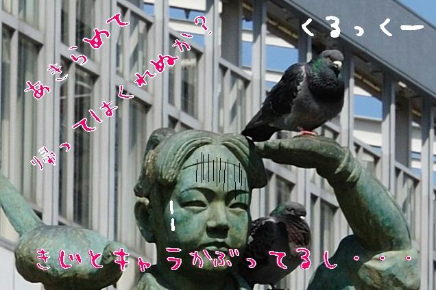 DSC_d2.jpg