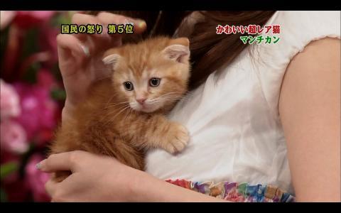 yumi-6-28-02.jpg