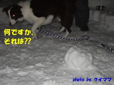 雪玉にビビる
