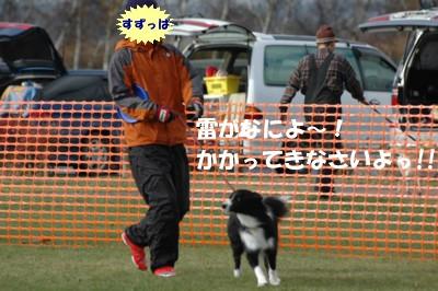 DSC_8147.jpg