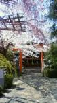 nara-kangoku-jinjya.jpg
