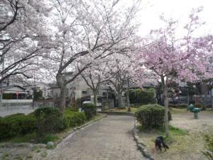 公園2P1050020