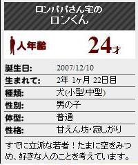 2010-2-1-2.jpg