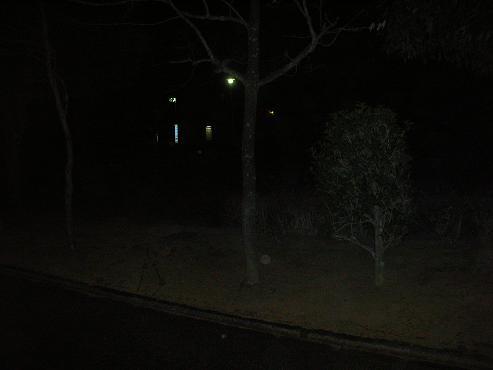 DSCN3406-270.jpg