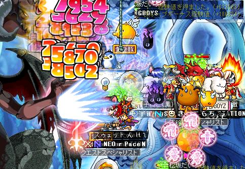 羽 20090201