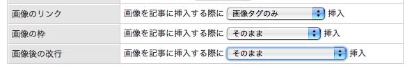 画像挿入形式選択B