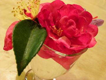 おみやげの花