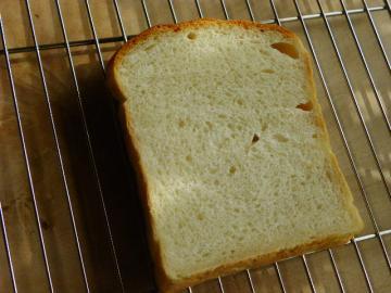 食パン 断面