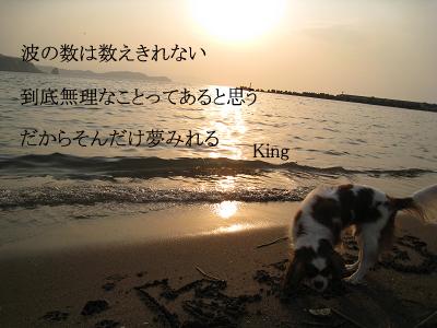 IMG_00910005のコピー