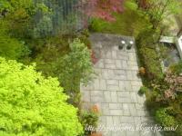 強羅花壇 8のコピー