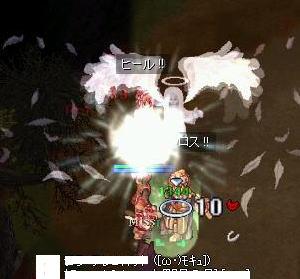 20060311115804.jpg