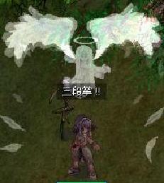 20060519213137.jpg