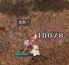 20070401155525.jpg