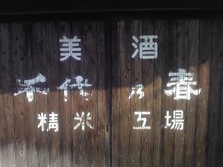 千代乃春1