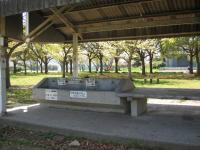 大浦崎公園キャンプ場_13