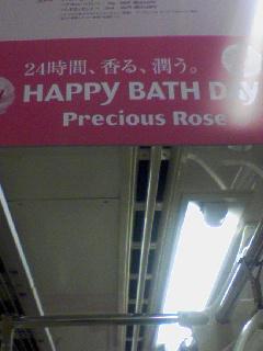 precious rose1