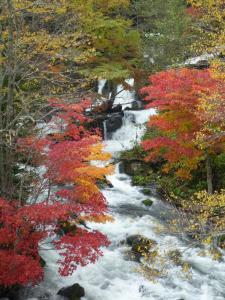 滝見の橋 2