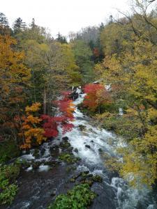 滝見の橋 1