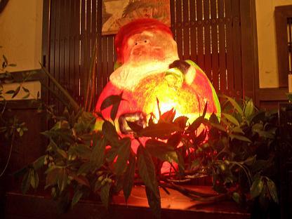 わん茶もクリスマス!