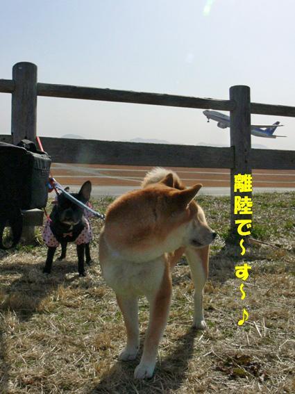 離陸で~す!