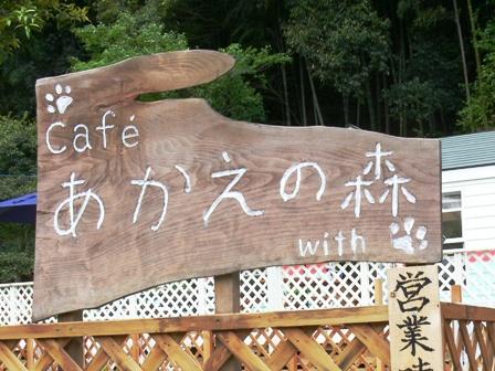 cafe あかえの森