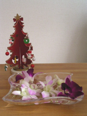 友人からもらったクリスマスツリーと義妹からのデンファレ