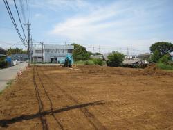 大角豆2011-114