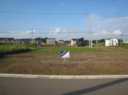 島名香取台B5-11