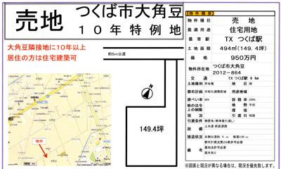 大角豆2012-864