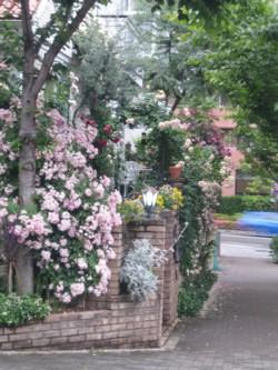すばらしきバラの家
