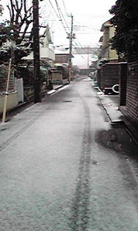 Image371.jpg