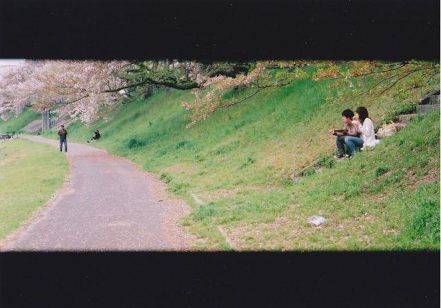 桜木花道2010