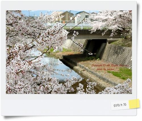 IMG_4093-1.jpg